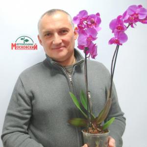 Харебава Сергей
